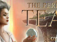 The Perfect Tear by Connie Lansberg – Teaser + Giveaway @theperfecttear