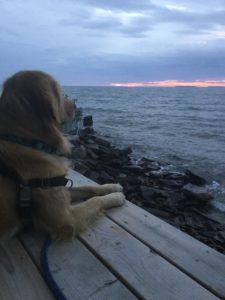 Gibbs at Superior Lake
