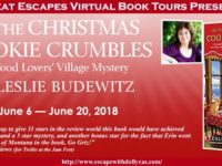 As the Christmas Cookie Crumbles by Leslie Budewitz – For Better or For Worse, but For a New Kitchen, Too?